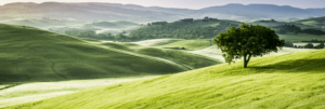 Green pastures and rolling hills